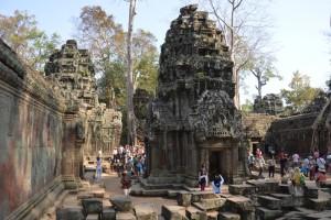 1126 - 10 02 2014 - CBD - Angkor - Temple Ta Prohm
